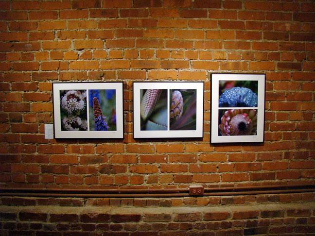 Nail Art House Japantown San Francisco Ca 2015 Personal Blog