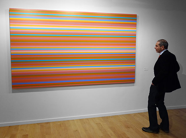 Bridget Riley artist art
