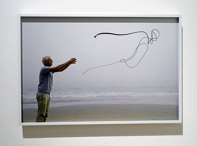 Andy Goldsworthy artist art