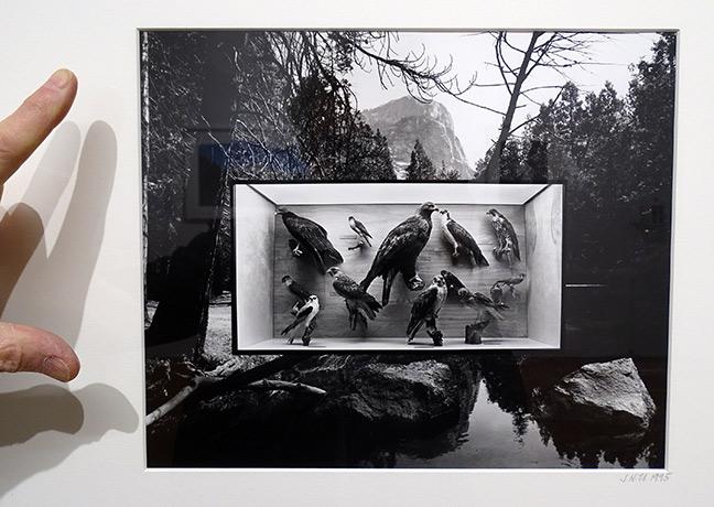 Jerry Uelsmann artist art